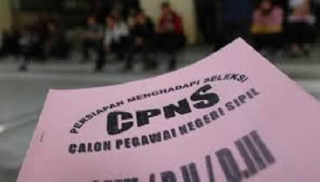 Ini Sementara Formasi CPNS Pekanbaru