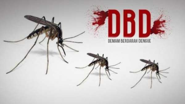 Tujuh Pasien DBD di Pekanbaru Masih Dirawat