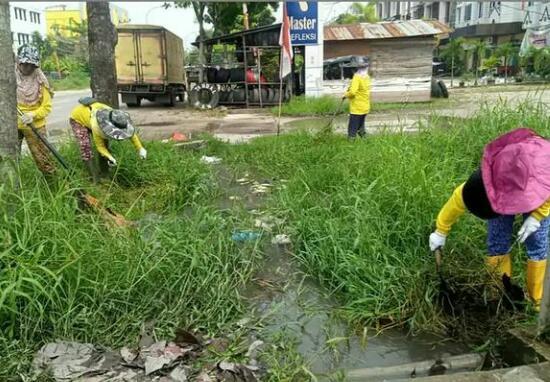 Dinas PUPR Bersihkan Sisa Pohon Tumbang yang Menutupi Drainase Jalan Riau
